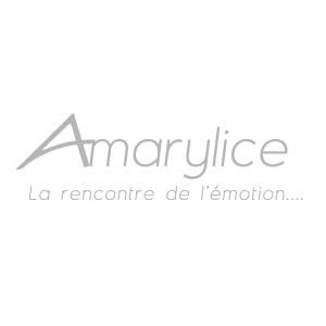 Partenariats les amis de la place antonin poncet for Amarylice fleuriste lyon