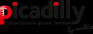 les-amis-de-la-place-antonin-poncet-logo-picadilly